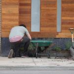 Urban Gardening ist überall